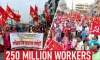 250 million workers